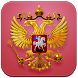 Конституция РФ (Без рекламы) by AndroidBook
