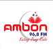 Ambon FM by Nobex Partners Program