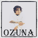 Ozuna Musica by CipitihStudio
