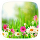 Spring Flowers Theme by Huizhang Theme