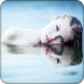 Water Reflection Photo Effect by Photo Video Studio