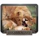 أفلام وثائقية بجودة عالية by haidar salim