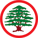 lebanese-forces.com by Eurisko Mobility S.A.L. Offshore
