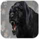 Panther Sounds by Apps Dev Inc