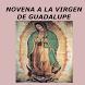 Novena Virgen de Guadalupe by Maria de las Mercedez Lopez Lopez