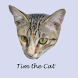 Tim the Cat by Pelancar Apps
