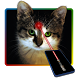 Laser pointer for cats joke by LauferApps