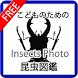 【無料】こどものための昆虫図鑑