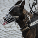 American Police Dog vs Robbers by BigOTech - Entertainment Games