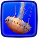 Jellyfish Live Wallpaper by Live Animals APPS