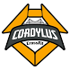 CrossFit Cordylus by www.boxcheckin.com