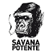 SAVANA POTENTE by Savana Potente