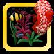 Plasticine Aquarium FREE by ACS(Acinis Creative Studio)