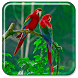 Parrot Live Wallpaper by Live Wallpapers Gallery