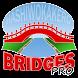 Hashi Bridges PRO by NingyTec.com