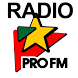 Radio PRO FM Romania by webstudio86