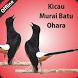 Kicau Murai Batu Ohara by Tidut app
