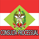 Consulta Processual TJ/SC by Publiquei - Marketing Inteligente