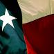 Dallas TX News App by MCAPPSTUDIOS
