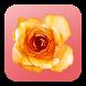A flor de piel by CDI