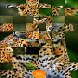 Photo Puzzle by Cutting Edge Solutions