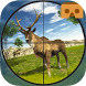 Deer Hunting VR Shooter Games by FlipWired 3D Games