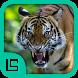 Fauna Provinsi Indonesia by Isnaini