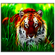 Tiger Live Wallpaper by SoftFree2015