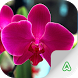 Orchids Guide by Agrimind Apps