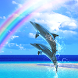 Dolphin Breeze by DMF, Inc.