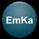 ЭмКа - Эмулятор Катализатора by eusdev.com