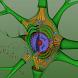 EON 3D Neuron Structure by EON Reality, Inc