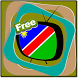 All Channel Namibia by Info TV Satellite Mobile App Lab