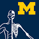 MSK Anatomy - SecondLook by The University of Michigan