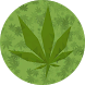Marihuana LowPoly 3D Live Wall by NatureSoft Games