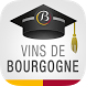 Discovering Bourgogne wines