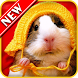 Hamster Wallpapers by Wallpaper HD Store