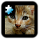 Jigsaw Puzzle VIP: Kitten by CoCoPaPa Soft