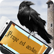 Raven: Add Text Message by Appreal