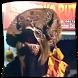 Kuda Lumping Samboyo Putro Ndadi by kenhuhah