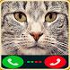fake call cat Caller