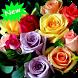 Rose wallpaper by Seaweedsoft