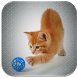 Squeaky Toy by Apps Dev Inc