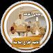 أناشيد أفراح إسلامية بدون نت by channa apps