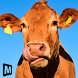 Euro Farm Simulator: Livestock by MAS 3D STUDIO - Racing and Climbing Games