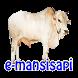 e-mansisapi