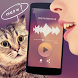 Translator for cats Simulator by Fresh & Mint