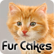 Fur Cakes - Creamsicle