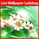 Ladybug Live Wallpaper by LiveWallpaperThemes