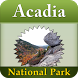 Acadia National Park - USA by Swan Informatics